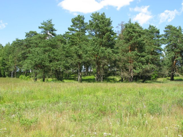 Продажа земельных участков в финляндии квартиры дубай